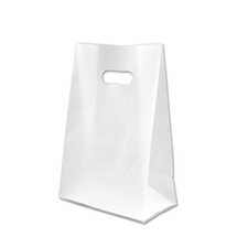 Small clear frosted bag