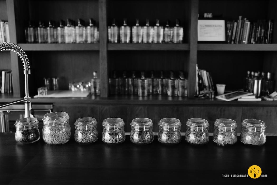 Distillerie Côte des Saints