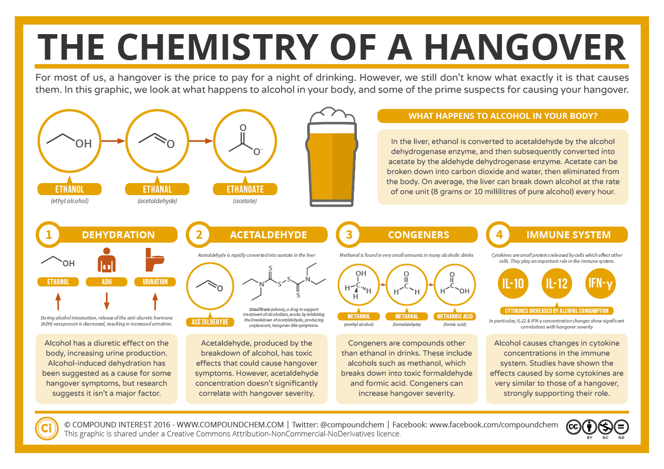 The Chemistry 101 Of A Hangover Infographic