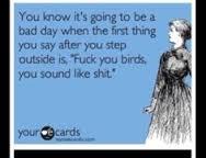 bad day 5