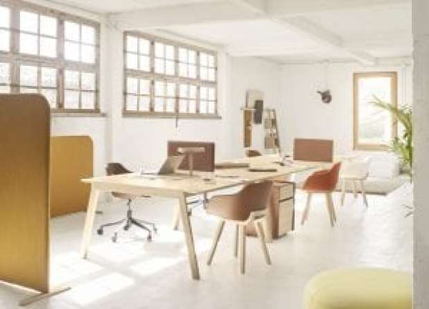 Alki Heldu Office, Iratzzoki Lizaso 15, Workplace, 100% Design 2017