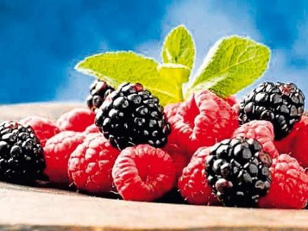 Frutos del bosque, sept