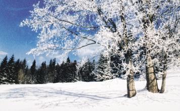 Consejos de salud para el invierno