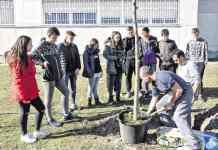 Día del Árbol en el IES El Espinillo