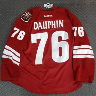 Laurent Dauphin Game Worn 76