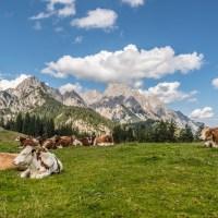 Het SalzburgerLand: Wat kun je hier allemaal doen?