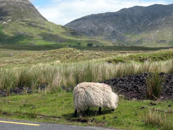 Ierland Connemara autoroutes 2019