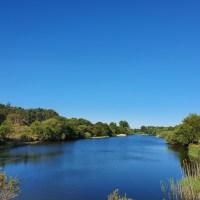 De Amsterdamse Waterleidingduinen: Op wandelsafari in Nederland!