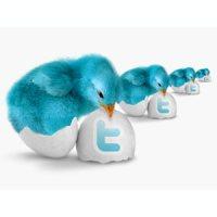 Aprendiendo a usar Twitter para políticos