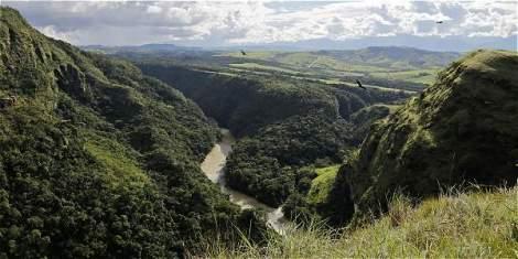 Ubicado en el Departamento del Meta, en el municipio de San Martín de los Llanos, Colombia creó el primer banco de hábitat en Latinoamérica. Foto: El Tiempo