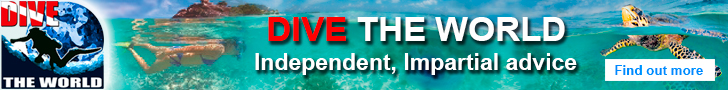 Visit Dive The World - the No. 1 online authority on dive travel
