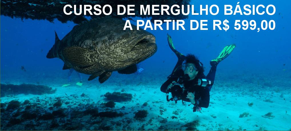 Curso de Mergulho Básico – Open Water Diver – PADI