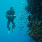 gratis duiken