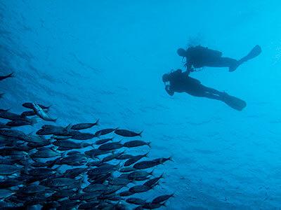 Dive College Lanzarote, tauchen, El Emisario, Playa Blanca