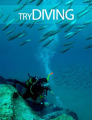 Try diving, Dive College Lanzarote, Playa Blanca