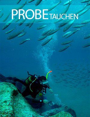 Probe tauch, probetauchen, Dive College Lanzarote, Playa Blanca