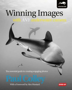 Winning Images with Any Underwater Camera - cover image
