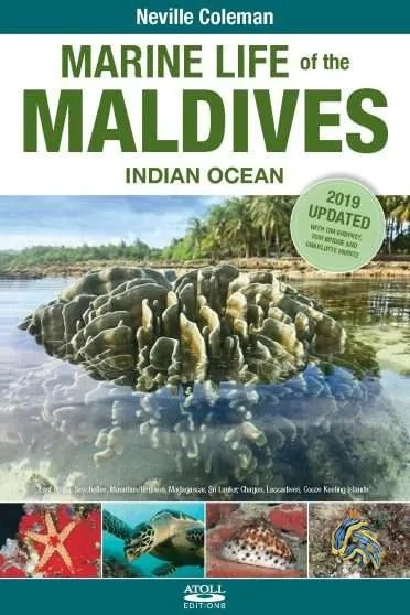 Cover: Marine Life of the Maldives - Indian Ocean