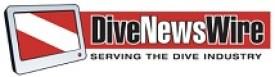 2015 DNW Logo smallest