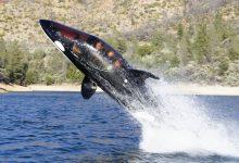 כלי שייט מהירים לצלילה וטיסה מעל המים