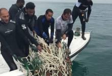 צוללים בדובאי מנקים את הים