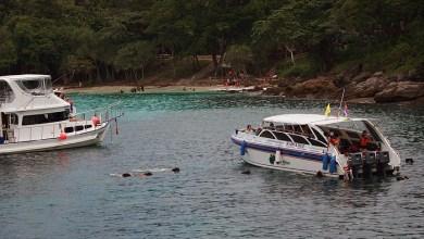 צלילה באי פיפי