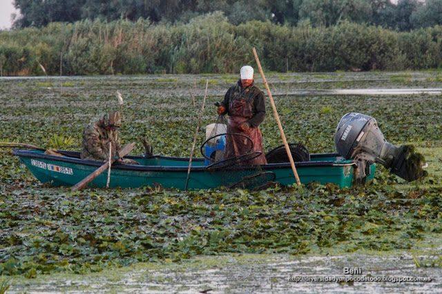 pescadores artesanales en el delta del danubio