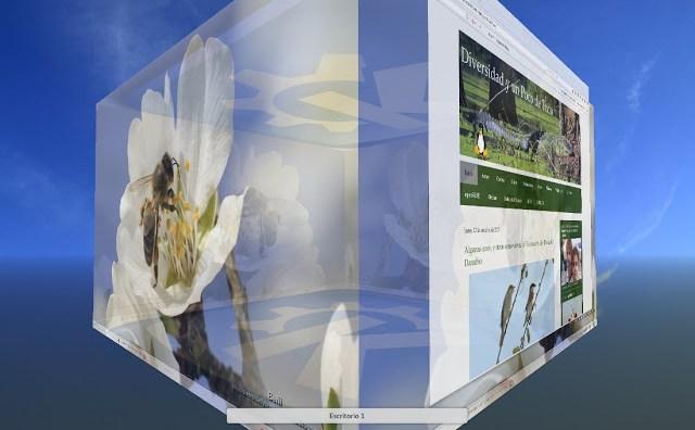 KDE Plasma 5, cubo de escritorio