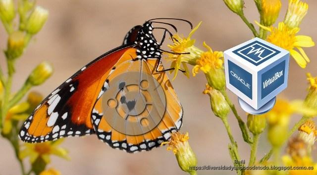 Virtualbox, instalar las guest additions en ubuntu