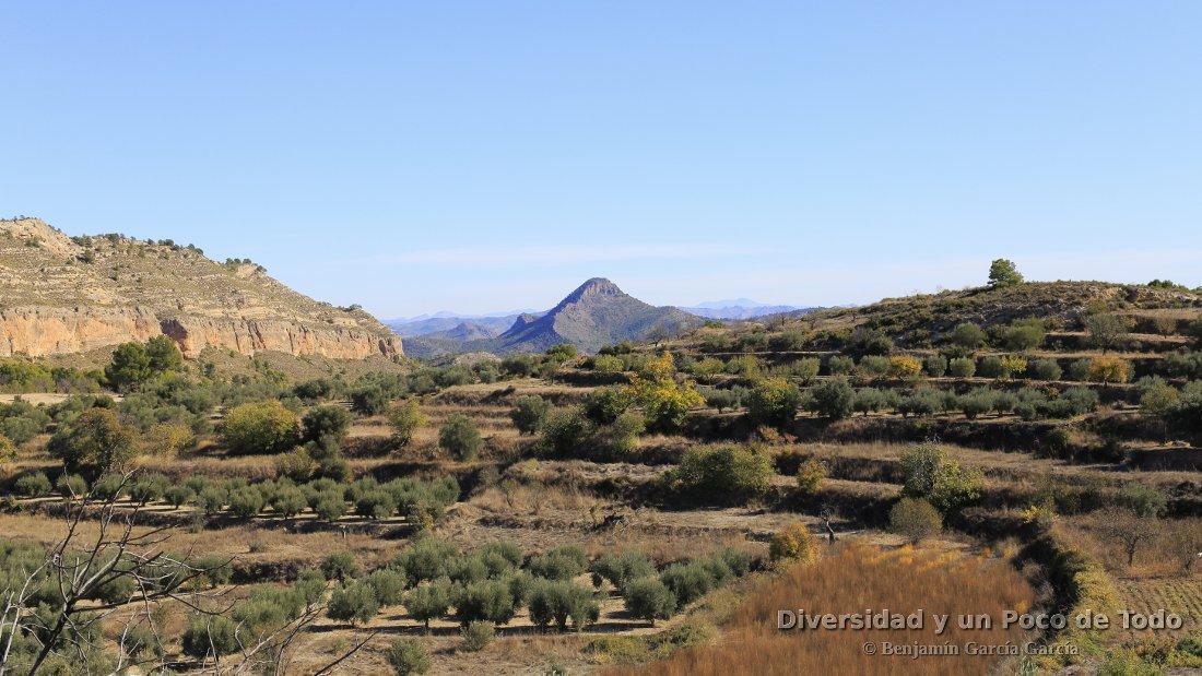 paisaje de tierra de gazpachos manchegos, entre ferez y letur