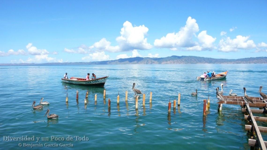 El golfo de cariaco en venezuela