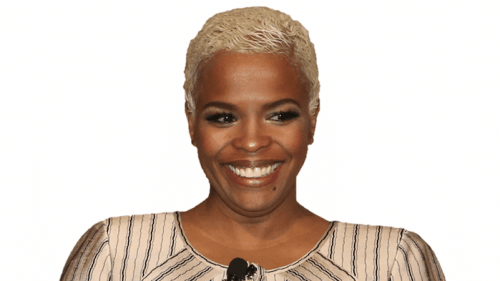 carolynn johnson, diversityinc, ceo