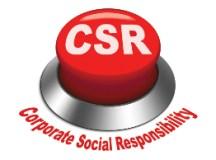 How Do Companies Leverage Corporate Responsibility Branding?