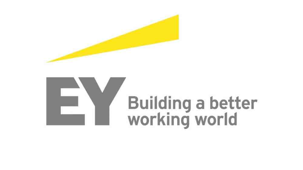 EY's Global Diversity and Inclusion Committee is Structured to Effectively Tackle Global D&I Challenges