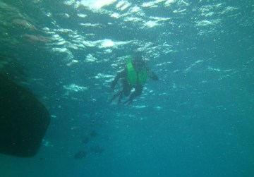 Cozumel Mexico with Diveshack USA May 2014