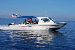 Dive Speedboat