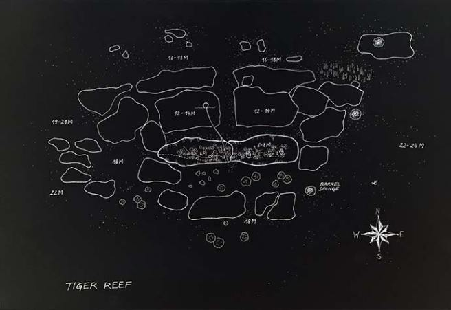 Tiger Reef dive site map