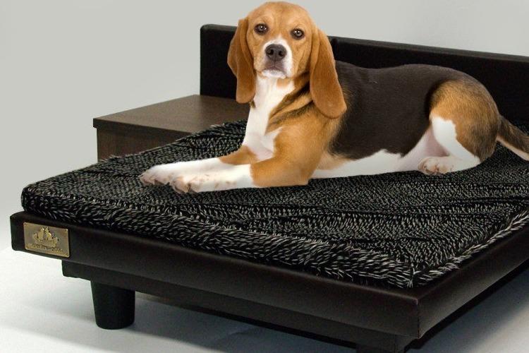 Una cama para perros de lujo ¡con mesitas!