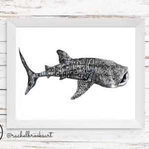 whale-shark-print-rachel-brooks-art