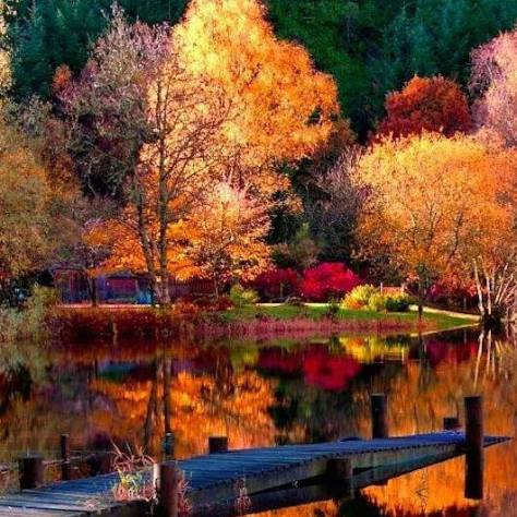 The autumn equinox represents the arrival of the Fall season. It's the beginning of the holidays in many different cultures, autumn is the beginning of the spiritual cycle. It starts on September 22, 2017 that officially marks the beginning of the fall season in the northern Hemisphere and spring in the Southern Hemisphere. The equinoxes happen day and night at the perfect timing. Bringing a balance between dark and light. The feminine and the masculine of the outer and inner, Soulmates and Twin flame connections are brought to higher vibration. It is the final harvest of many different types of fruits and veggies crops. The equinox is it time to harvest the seeds with your dreams and ultimate goals that you have set and planted this year. Getting prepared for 2018. Focusing on moving forward and giving gratitude. With all of the energy shifts that just happened in August, and still continuing. With the fall equinox this is the time to honor by sending love and light to everyone around you and all over the world. Helping the world heal from these intense energy shifts. Autumn is a time that we find our inner peace with love and soulmates. Put out intentions and start to make room for the upcoming year 2018. We start to create fertile soil for our higher self to manifest. Allowing positive vibes and new beginnings to emerge through the new year. Manifesting energies with dark and light. This is the time to balance the light in the dark this within ourselves. When it comes to masculine and positive energies with the Soulmates, You may experience turbulence in the love area, it is part of the energy shifts that has just happened. This is not the ideal time for any type of deep discussions when you're involved in a serious love relationship.With autumn equinox it represents the darkness working through spiritual transformation. Soulmates and twin Flames will feel a very powerful Energy source to their core. But the combination of The spiritual events that have been occu