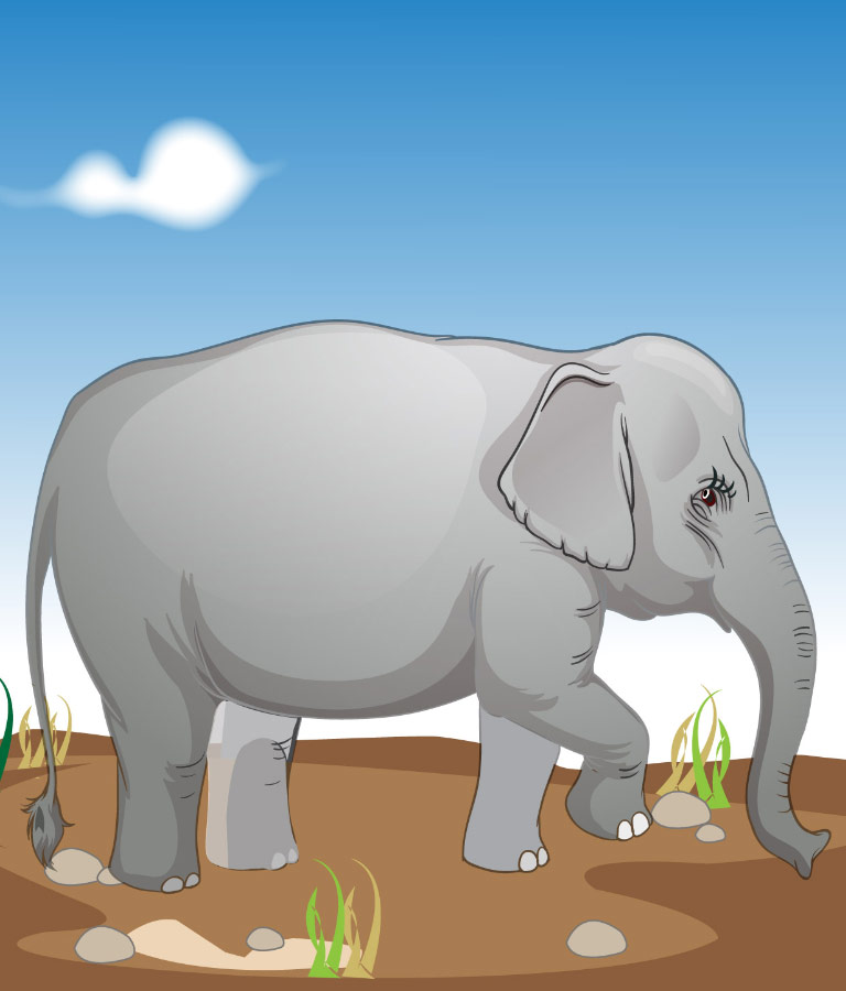 Elephant vector free Illustration