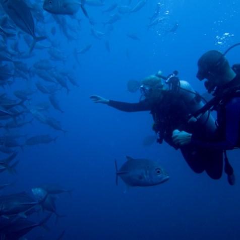 Затонувший корабль Либерти, Туламбен, Бали