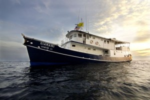 MV Giamani - Operated by Colona Liveaboard Thailand