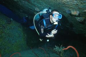 Similan Diving safaris Diver at Elephant Head Rock