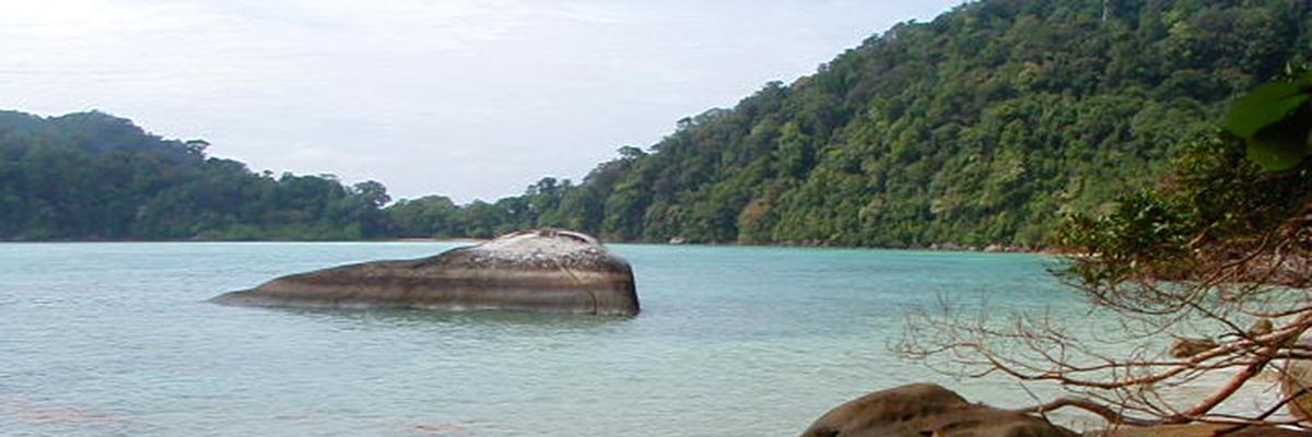 Isole Surin