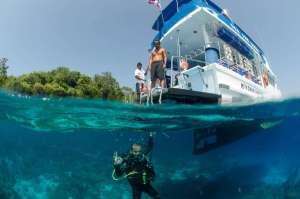 Diving Phuket Adventures