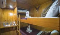 Bunk Bed cabins