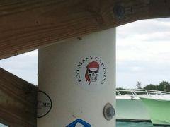 sharkschool_divingfamily_2014 (14)