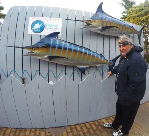 Blue marlin - Hemmingway`s favorite