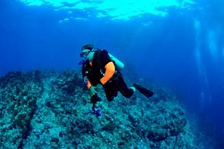 Gerhard im großen Ozean